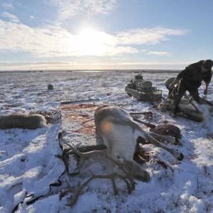 Охота - главный промысел