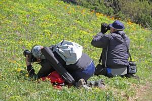 Преклоняем колени перед шедеврами природы (фото Ирины Улановой)