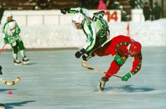 «Круглый стол» на тему:  «Кто «убивает» русский хоккей?»